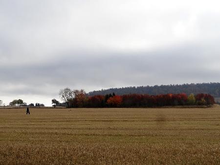 Falköping-13 Morgon2