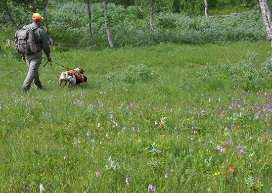 Blommor Stekenjokk-15
