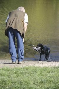 Lyckad vattenapport dock inte en svenskhund..